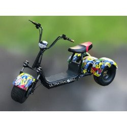 Трицикл Citycoco HARLEY Хип Хоп (Максимальный комплект)